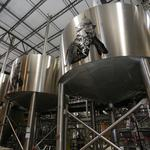 With its brewery rolling, what's next for BrewDog?