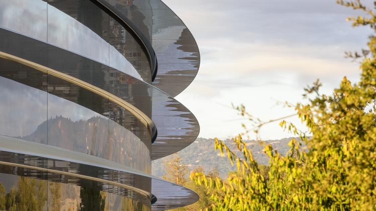People Reportedly Cant Stop Walking Into Glass At Apple Park