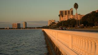 Do you agree with proposed changes for Bayshore Boulevard?
