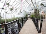 Botanical Gardens considers major expansion, capital campaign