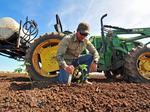 Photos: Organic farm sprouts in a southwest Houston suburb