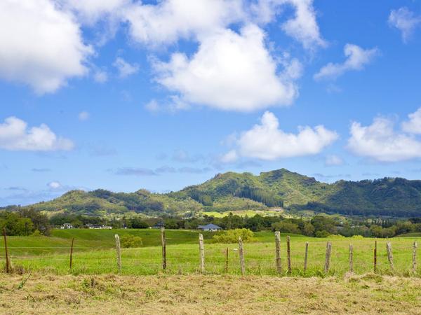 Private Kawaihau Land