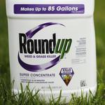 California to list key ingredient in Monsanto's Roundup as cancer-causing