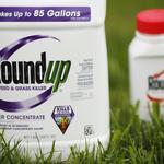 Monsanto slams law firm's document dump in cancer case