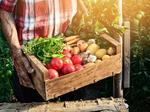 ProducePay raises $77 million to, well, pay for produce