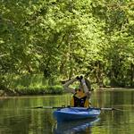 Metro Parks the No. 1 attraction in Central Ohio