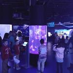 Greensboro Science Center's aquarium expansion attracts 5,000 on opening weekend