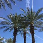 Real estate forecast: Phoenix office market to improve but still battling high vacancies via small blocks