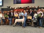 Rodeo Houston lamb and art auctions, Go Tejano Day 2017 attendance break records