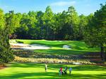 Pinehurst Resort's upgrades — plus a brewery — designed to appeal to changing demographics