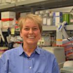Laura Shawver, Ph.D.
