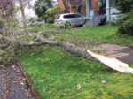 Widespread power outages as windstorm rakes Portland metro area