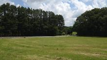 Eads, TN Beautiful Rolling Tract of Land