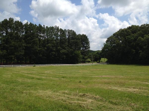 Home of the Day: Eads, TN Beautiful Rolling Tract of Land