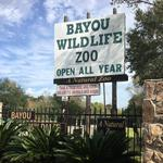 Photos: Open-range zoo south <strong>of</strong> Houston still for sale