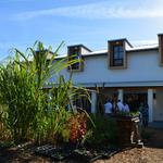 ​Inside the first-ever Emeril Lagasse Foundation Kitchen House & Culinary Garden
