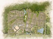 Master plan rendering of Pinewood Forrest.