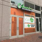 Cilantro's new downtown location could be the first of more to come