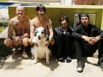 ​Red Hot Chili Peppers gross $1.2M from sold-out Atlanta concert