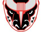 Birmingham Bulls coming back to life