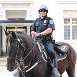 Business execs rally behind Milwaukee equestrian center for MPD, therapy programs