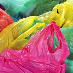 Science: Worms provide solution to plastic bag pollution