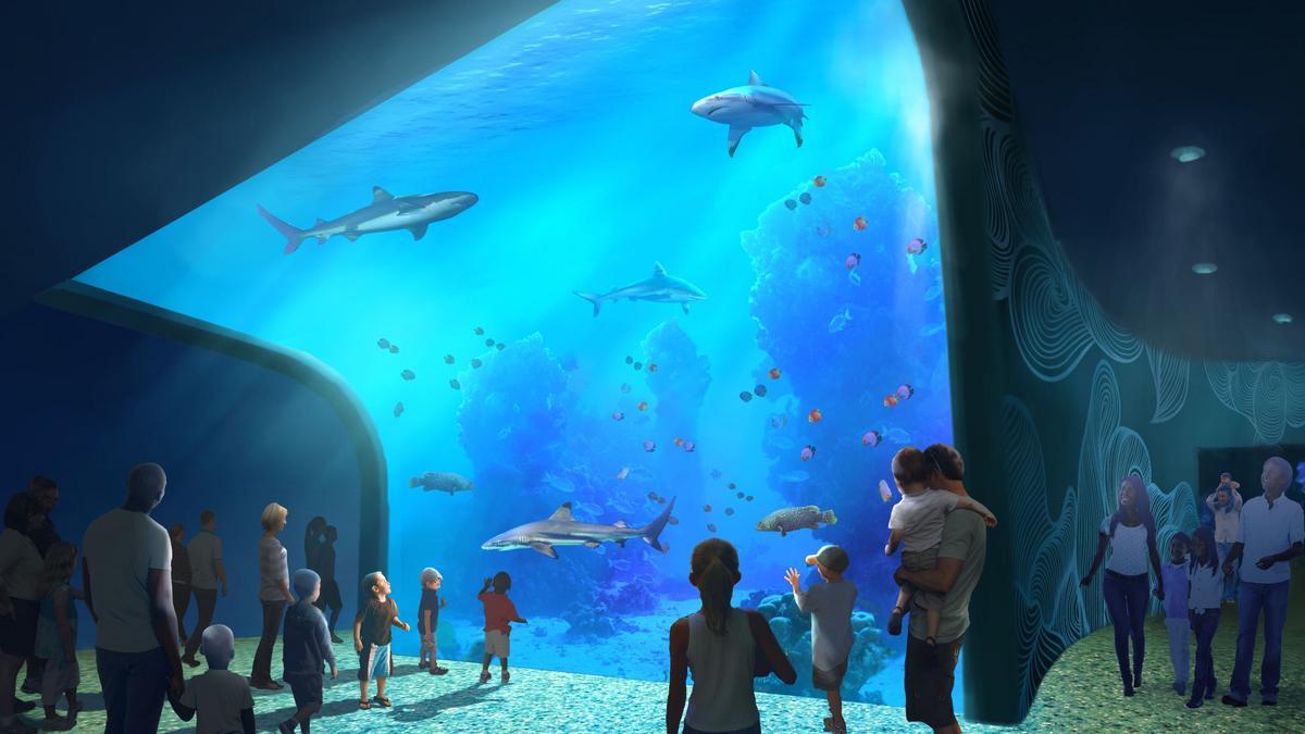 Lhm Selects Designer For St Louis Aquarium At Union