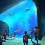 LHM selects designer for St. Louis Aquarium at Union Station