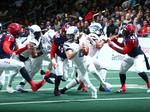 Arena Football League expansion continues with new team