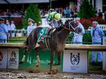 Always Dreaming wins the 143rd Kentucky Derby (PHOTOS)