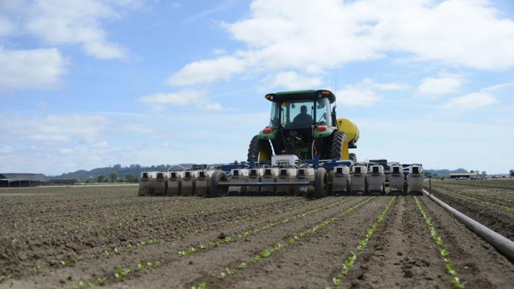 Agriculture leaders predict farms in California, Salinas