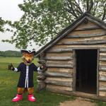 Montgomery County follows record year with 'foxy' idea