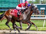 Off the Pace: Pa. racing industry struggles to attract younger customer base