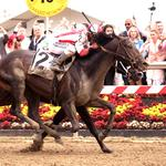 Who the Maryland Department of Commerce hosted at the Preakness