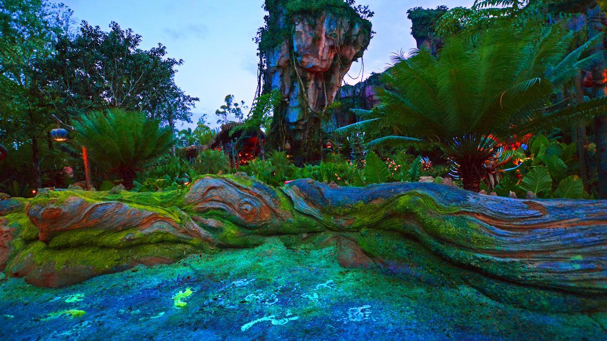 Pandora Shines As Disney Boosts Animal Kingdoms After Dark Appeal PHOTOS