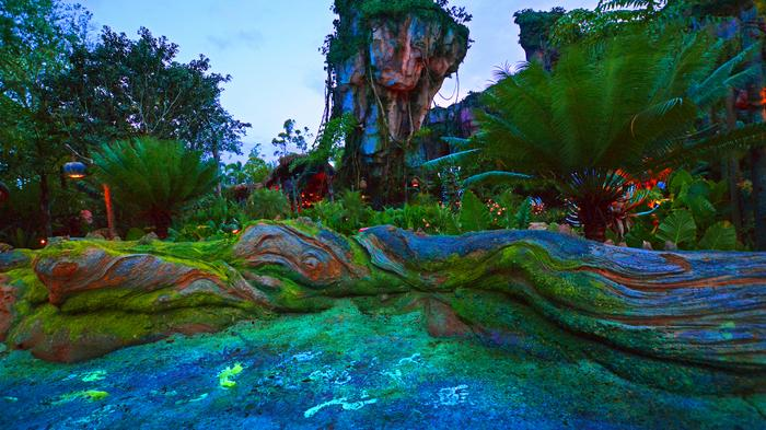 Pandora shines as Disney boosts Animal Kingdom's after-dark appeal (PHOTOS)