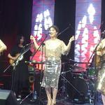 Asian chamber gala honors diplomats, entrepreneurs with music and dance