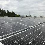 Champion Brands expects $763,000 in energy savings from solar power