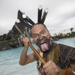 Orlando theme park attendance up at Universal, down at Disney
