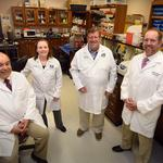 Augusta University researchers get $9.3 million to study aging bones and muscle
