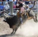 Column: How one software firm built a business (in Portland and <strong>Austin</strong>) one rodeo at a time