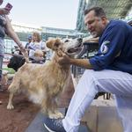See <strong>Miller</strong> Park go to the dogs: Slideshow