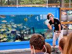 St. Augustine Aquarium adds tourist attraction outside downtown