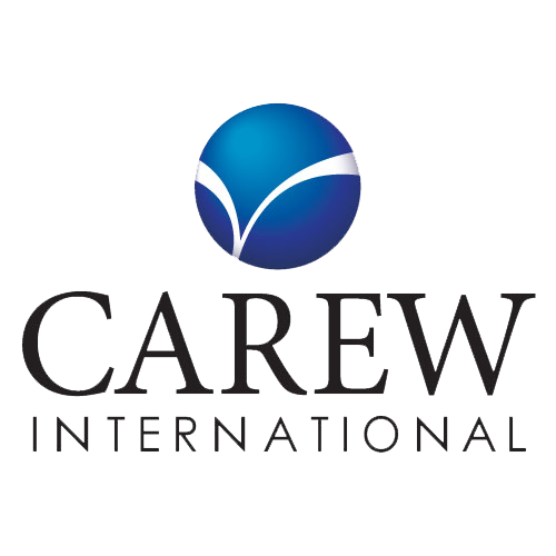 Dimensions of Professional Selling (DPS) - Carew International