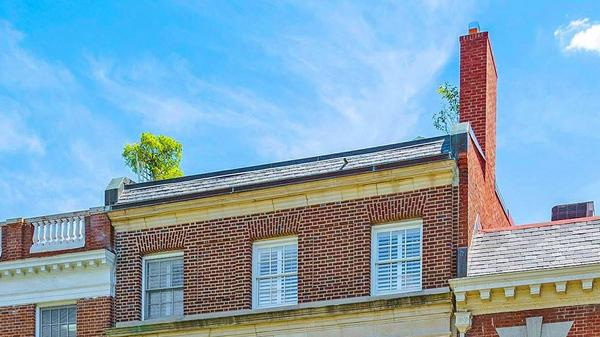Magnificent Townhome with Endless Possibilities- Kalorama