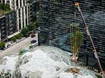 Hello, Rubi: Amazon drops big tree into its Seattle Spheres forest (Photos)