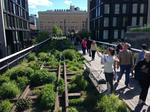 The case for Dayton's own 'High Line:' Downtown bike trail could be economic booster