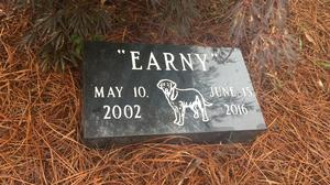 Triad business finds niche in helping pet owners honor Fido's memory