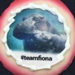 Fiona cookies return to Cincinnati bakery this week
