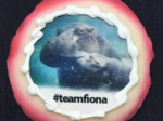 Fiona cookies return to Cincinnati bakery this week